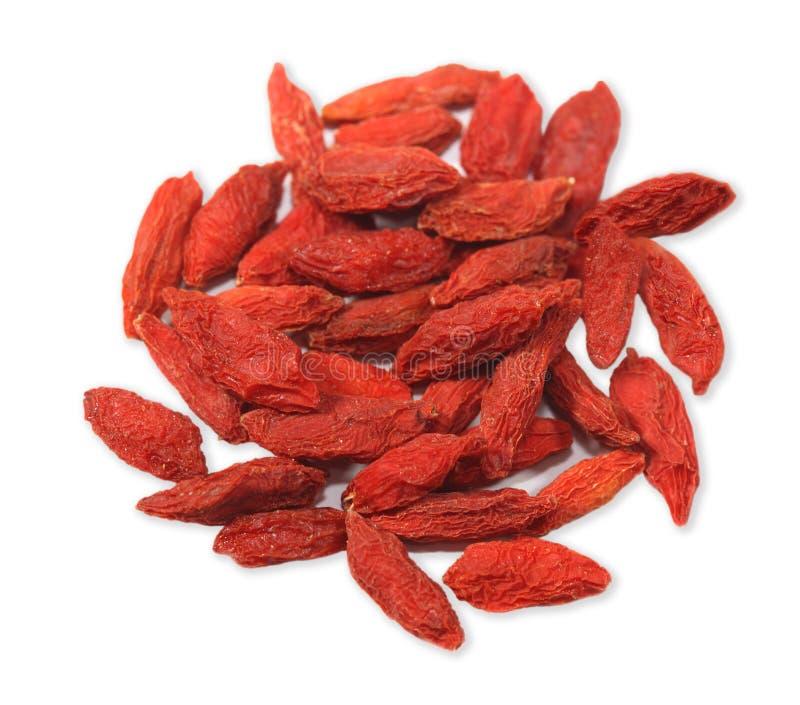 lychii goji fructus wolfberry стоковое изображение rf