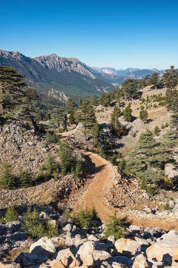 Lycian方式足迹的山风景在登上Olympos或Tahtali附近的在安塔利亚,土耳其附近 库存照片