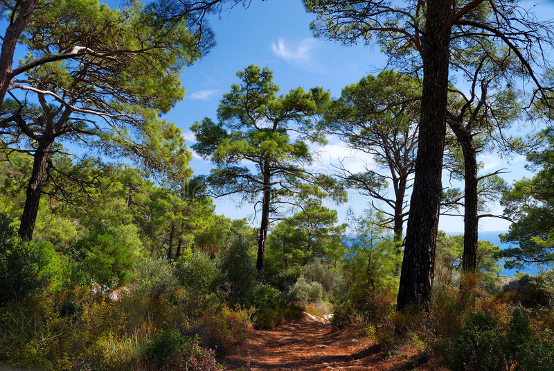 Lycian Way near Kalkan stock photography