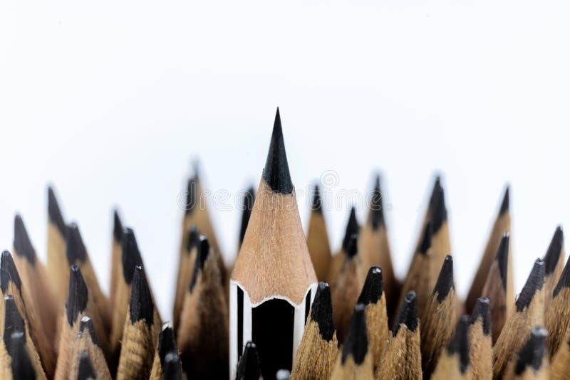 Lyckad lagledare för ledarskap, blyertspenna som föreställer ledarskap royaltyfri fotografi