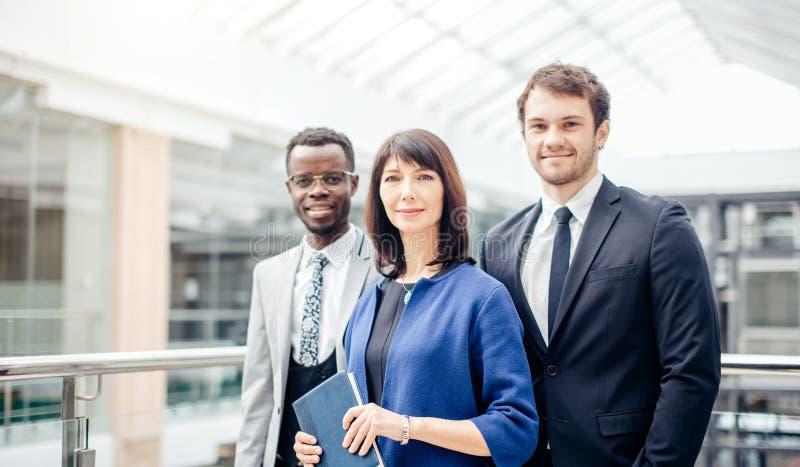 Lyckade businesspeople för träd, affärslag som poserar i modernt kontor fotografering för bildbyråer