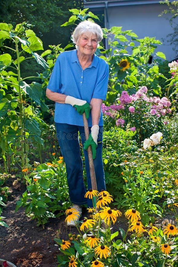 Lycklig äldre kvinna som odlar hennes blommaträdgård royaltyfria foton