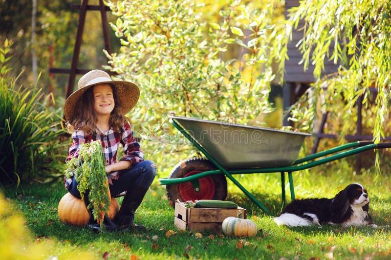 Lycklig barnflicka med spanielhunden som spelar den lilla bonden i höstträdgård och väljer grönsakskörden royaltyfri bild