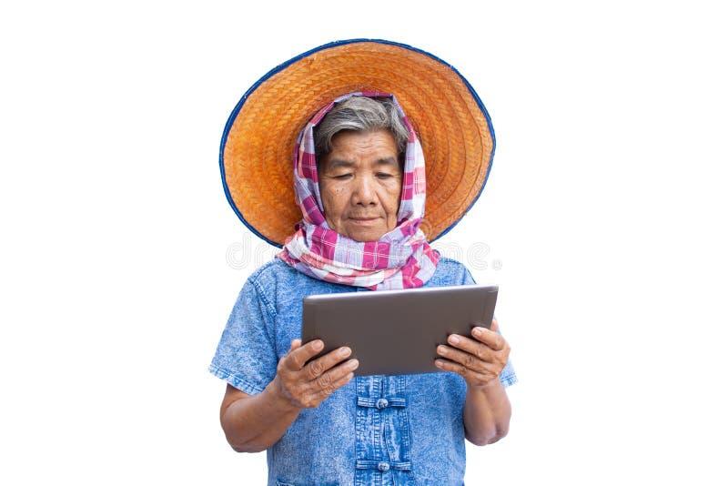 Lycklig bonde för gamla kvinnor som använder minnestavlan, och glat royaltyfri foto