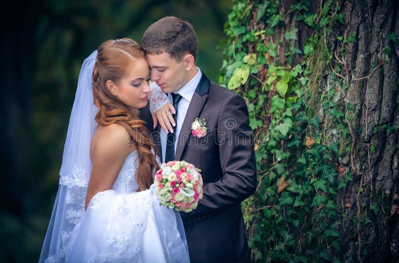 Lycklig brud och brudgum arkivfoton