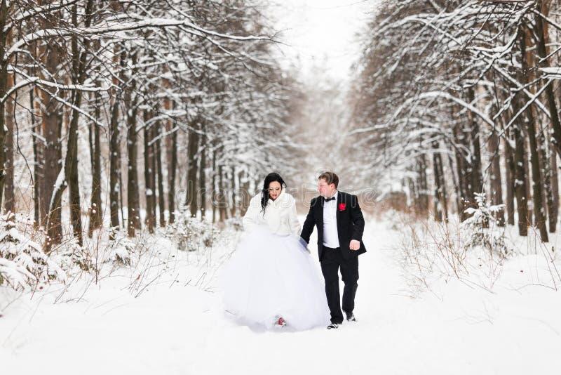 Lycklig brud och brudgum i vinterbröllopdag arkivbild