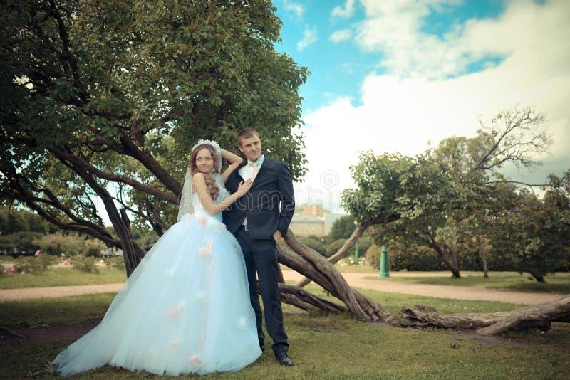 Lycklig brud och brudgum på deras bröllop i en parkera arkivfoton