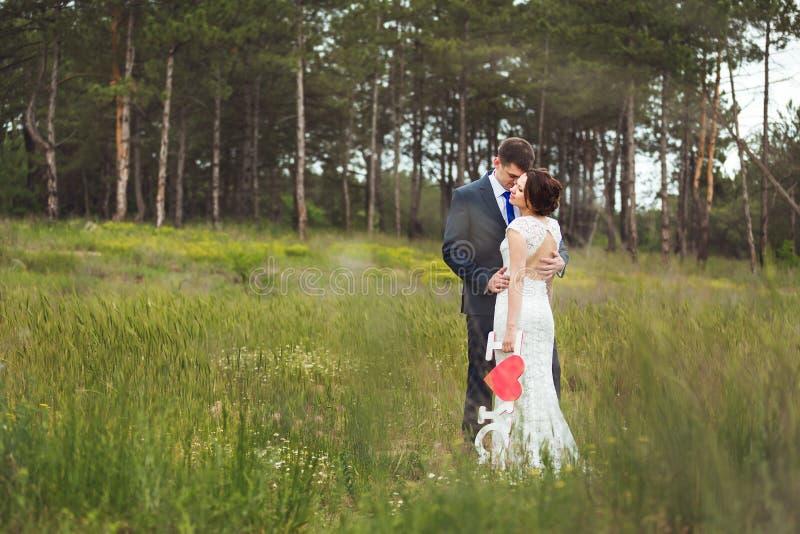 Lycklig brud och brudgum som firar bröllopdag att gifta sig kyssa för par Långt familjelivbegrepp royaltyfri foto