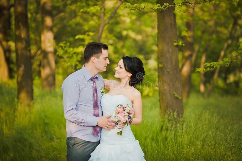 Lycklig brud och brudgum som firar bröllopdag Gift paromfamning arkivbilder