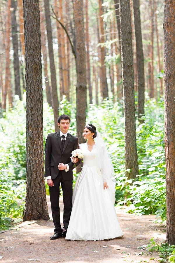 Lycklig brud och brudgum som går i sommarskog royaltyfri foto