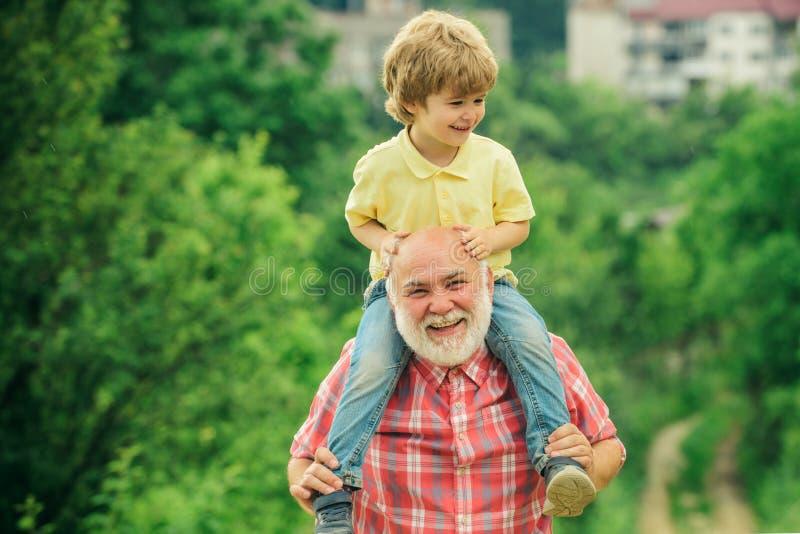 Lycklig familj - farfar och barn på äng i sommaren på naturen Lycklig glad farfar som har roliga kast royaltyfri fotografi