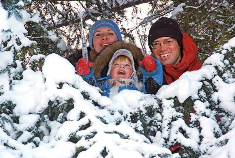 Lycklig familj i snögranträdet arkivbilder