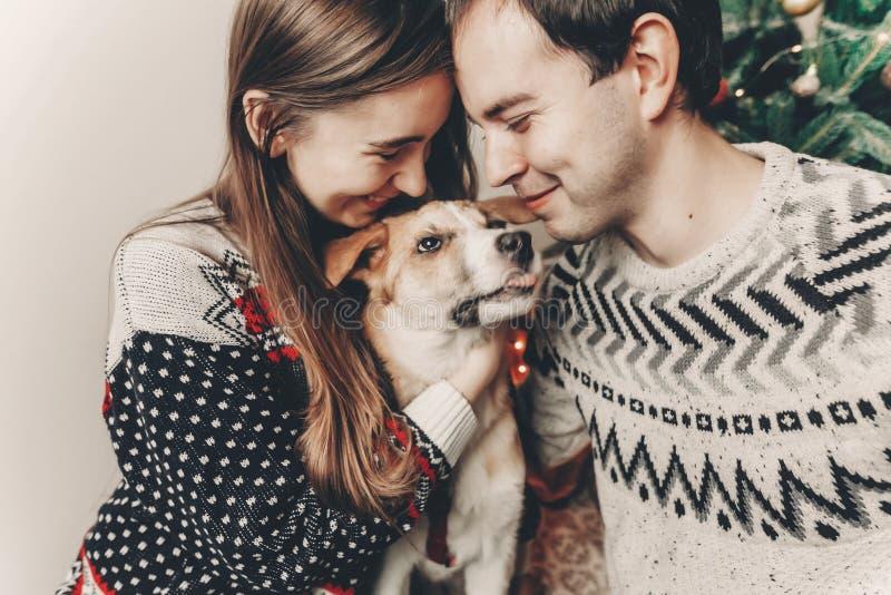 Lycklig familj i stilfulla tröjor som har gyckel med den gulliga hunden i fes royaltyfri bild