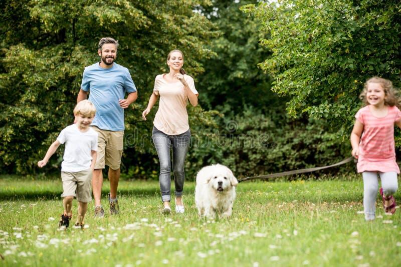 Lycklig familj med barn och hunden royaltyfri bild