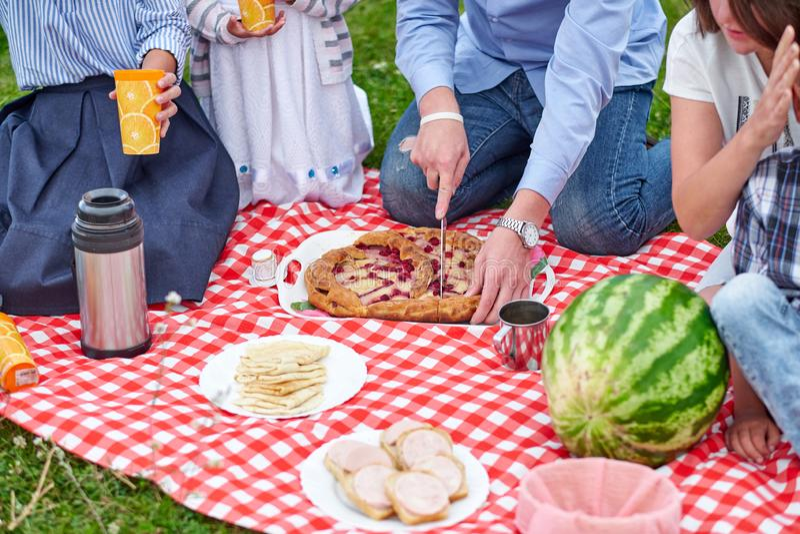 Lycklig familj p? en picknick Picknick i ?ngen eller att parkera Unga v?nner och deras barn i natur royaltyfri fotografi