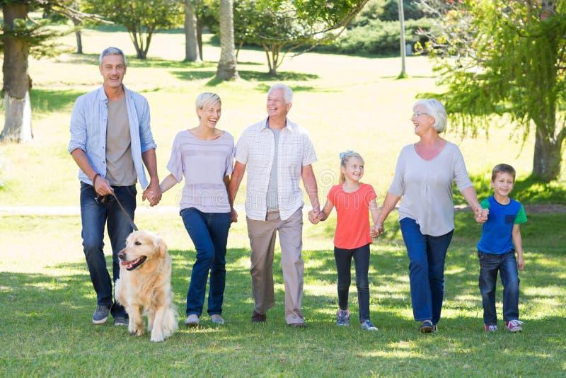 Lycklig familj som går i parkera med deras hund arkivbild