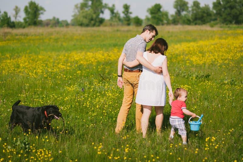 Lycklig familj som går med den svarta labrador hunden i sommarfält arkivbild