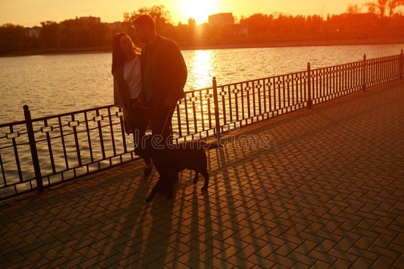 Lycklig familj som går med hunden på sjön arkivfoton