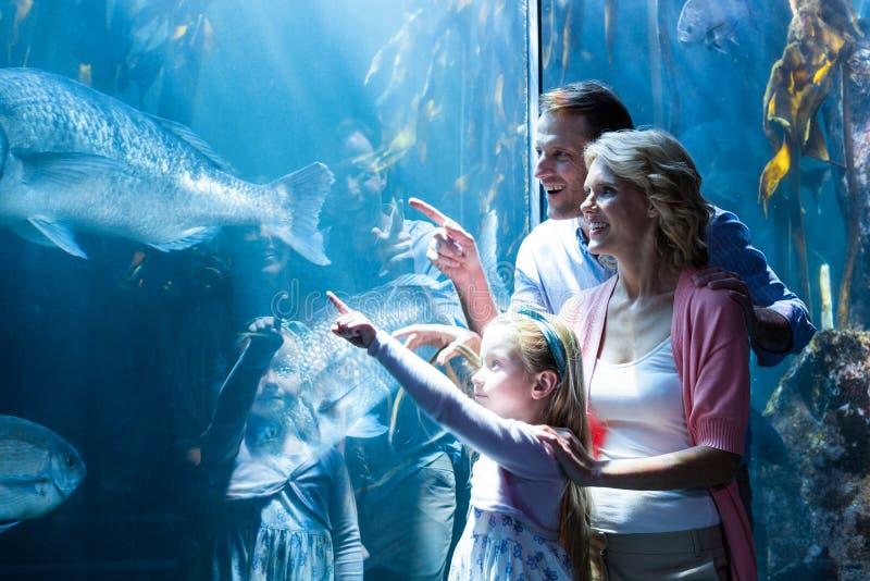 Lycklig familj som pekar en fisk i behållaren royaltyfri foto