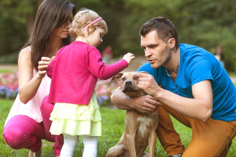Lycklig familj som spelar i parkera med hans hund arkivfoton
