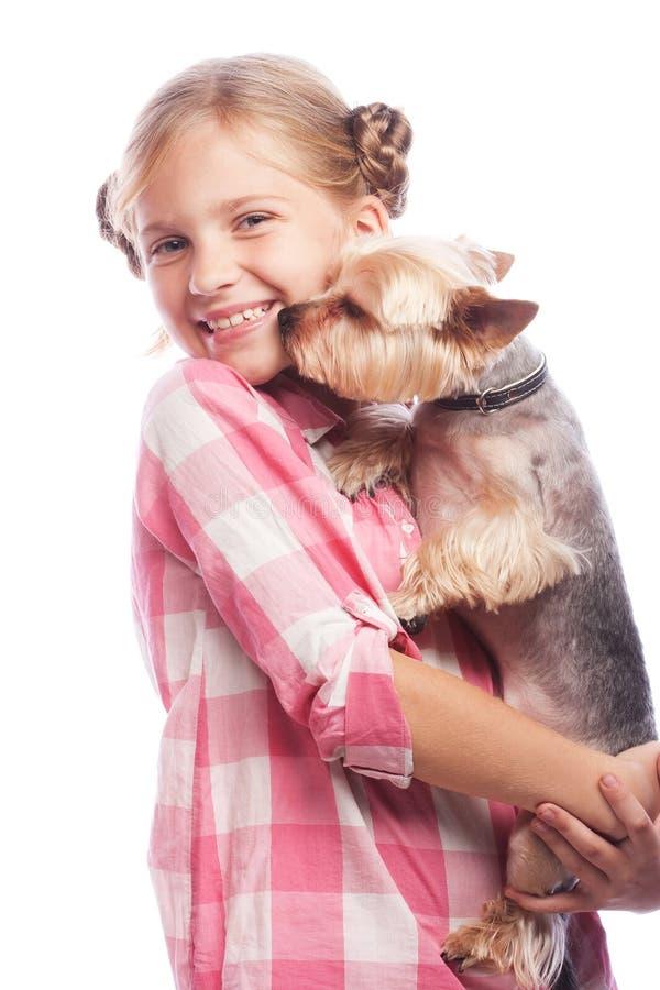 Lycklig flicka som rymmer hennes älskvärda hund för yorkshire terrier bakgrund isolerad white Innehåll lutning- och urklippmasker arkivbilder