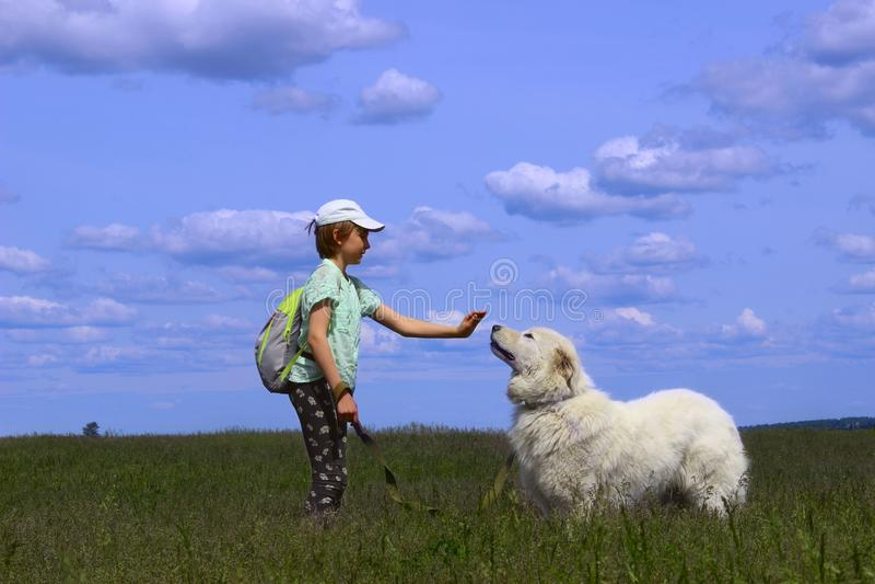 Lycklig flicka som spelar med hennes älsklings- hund arkivbild