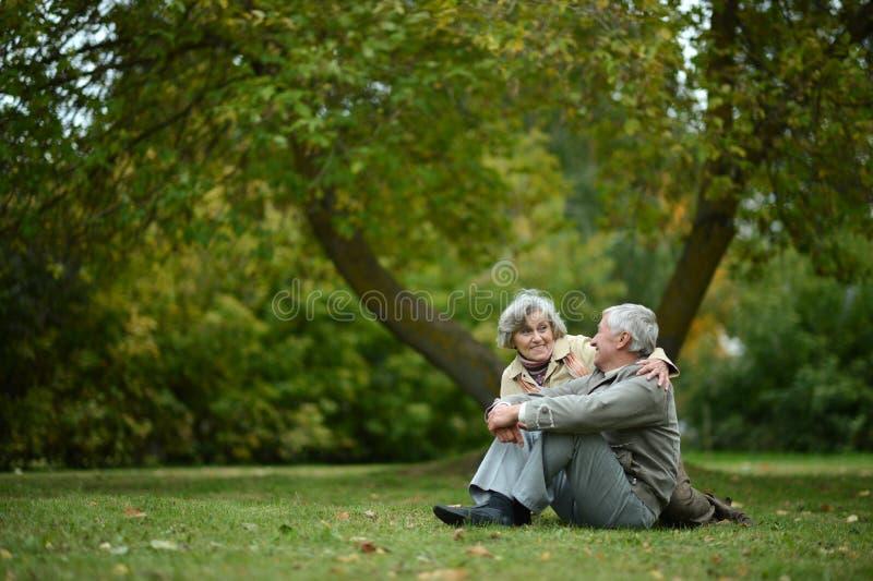 lycklig gamla människor arkivbild