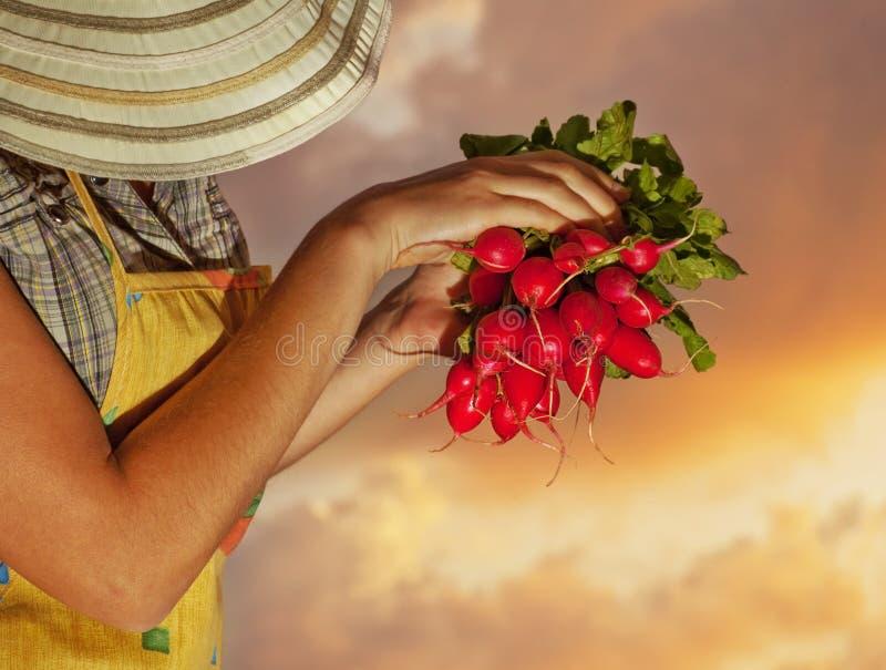 lycklig gammal kvinna för trädgårdsmästare royaltyfria bilder