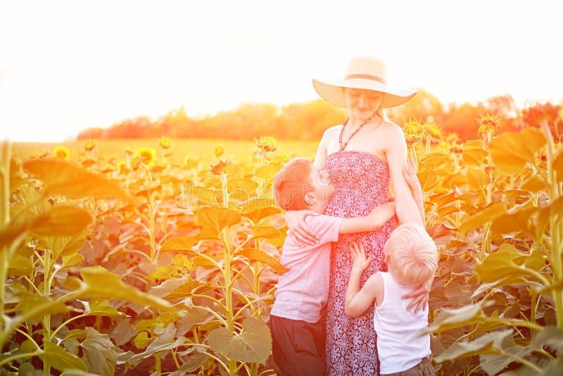 Lycklig gravid moder som kramar tv? lilla s?ner p? soligt f?lt av att blomma solrosor royaltyfri bild