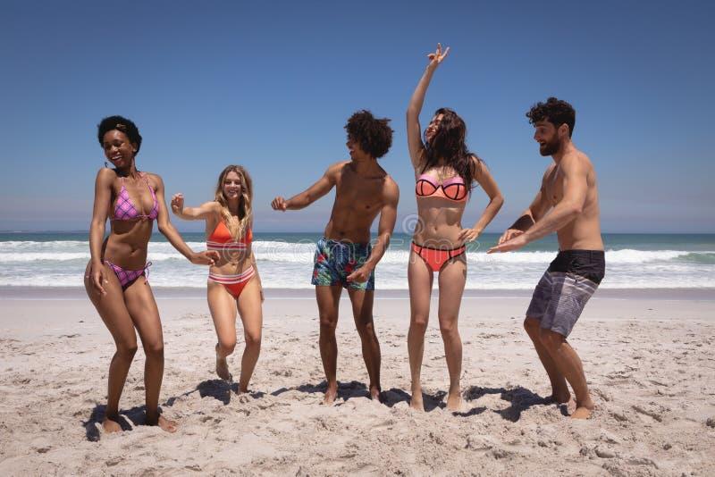 Lycklig grupp av vänner som tillsammans dansar på stranden i solskenet royaltyfri foto