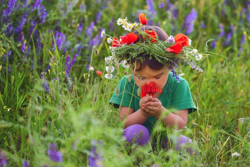 Lycklig gullig barnflicka på vallmofält royaltyfri fotografi