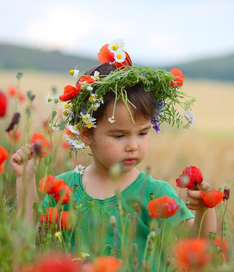 Lycklig gullig barnflicka på vallmofält Lyckliga barn fotografering för bildbyråer