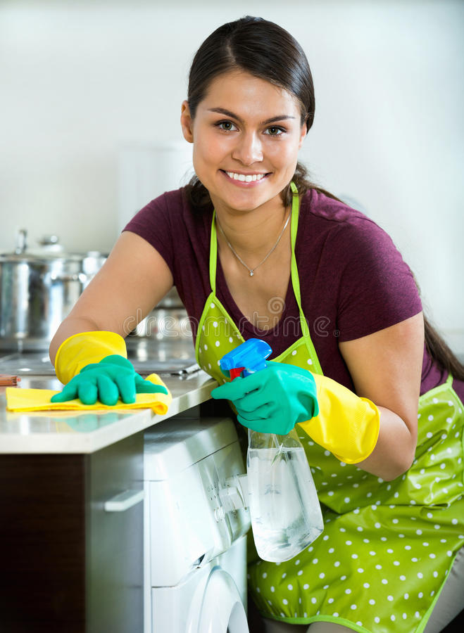 Lycklig hemmafru med trasan och rengöringsmedlet royaltyfria bilder