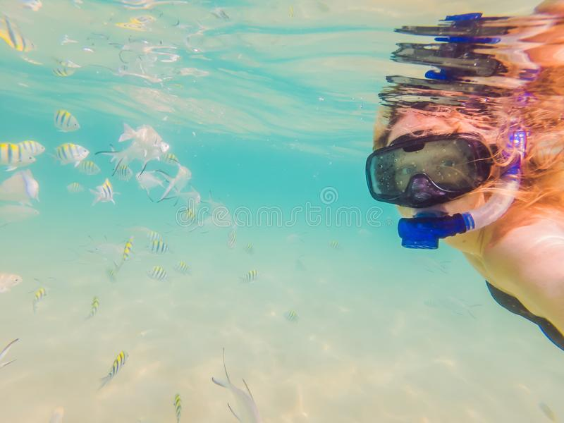 Lycklig kvinna, i att snorkla maskeringsdyken som är undervattens- med tropiska fiskar i pöl för hav för korallrev Lopplivsstil,  arkivbilder
