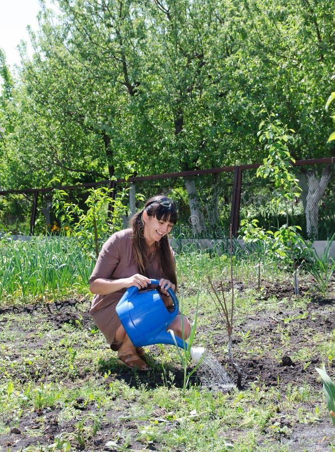 Lycklig kvinna som ansar till hennes grönsakträdgård arkivbilder