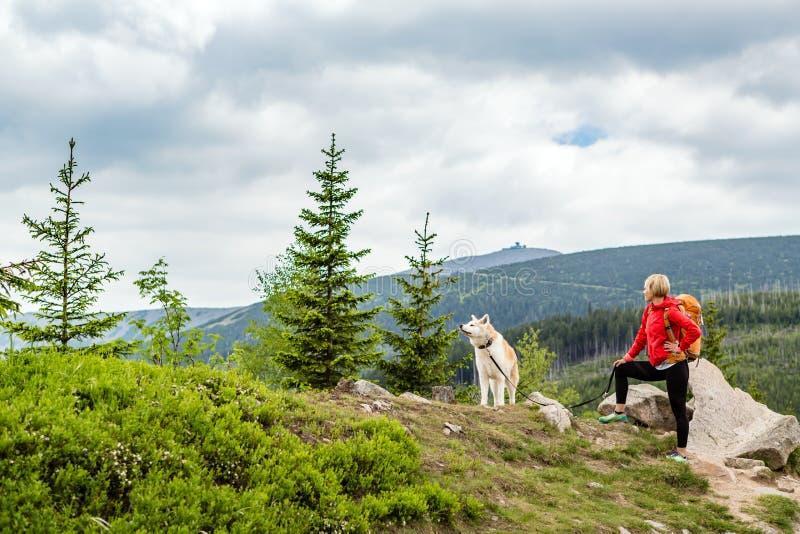 Lycklig kvinna som fotvandrar att gå med hunden i berg, Polen royaltyfria bilder
