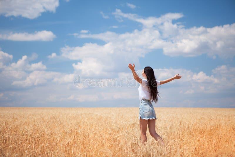 Lycklig kvinna som tycker om livet i f?ltnatursk?nheten, den bl?a himlen och f?ltet med guld- vete utomhus- livsstil svart isoler royaltyfri foto
