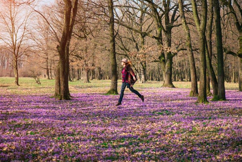Lycklig kvinna som tycker om vårnatur- och krokusblommorna royaltyfria foton