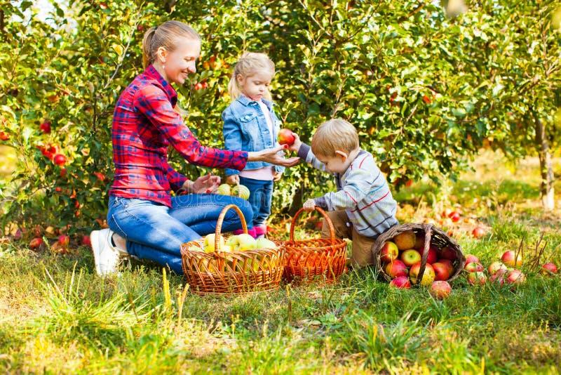 Lycklig le moder med barn, pojken och flickan arkivbilder