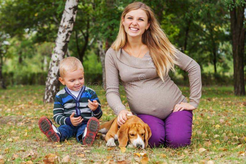 Lycklig le pregndntkvinna med den lilla sonen och hunden på gå fotografering för bildbyråer