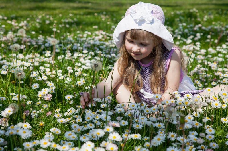 Lycklig liten flicka på en äng royaltyfri foto
