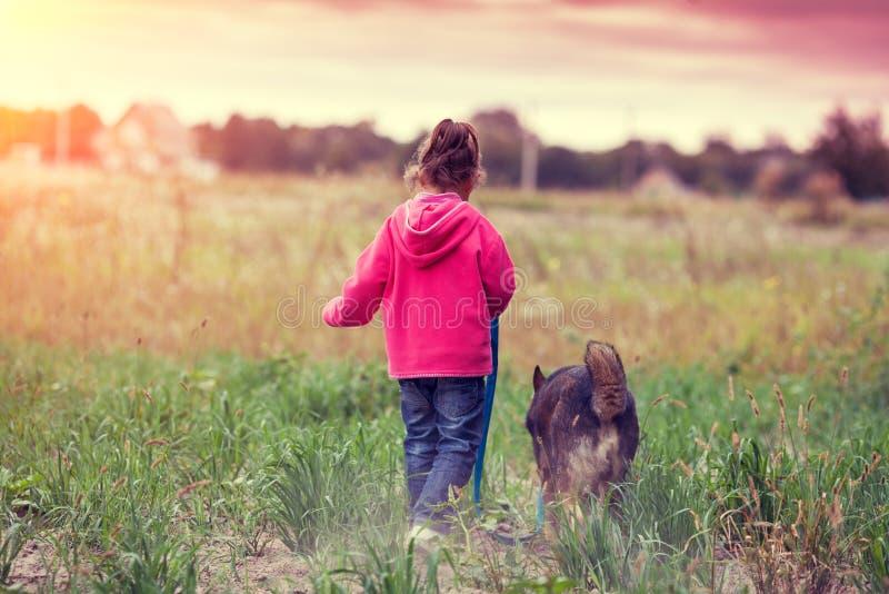 Lycklig liten flicka som går med hunden i fältet royaltyfri bild
