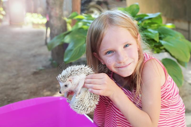 Lycklig liten flicka som spelar med hennes afrikanska pygméigelkott för husdjur royaltyfri bild