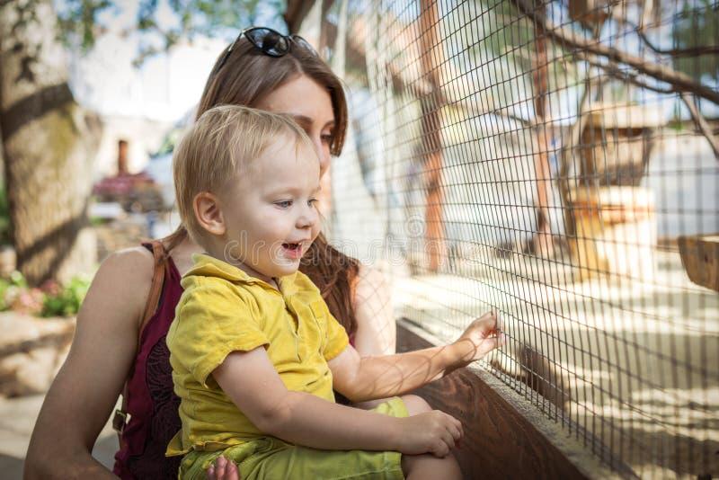 Lycklig litet barnpojke och hans ung moder som ser djuret på zoo fotografering för bildbyråer