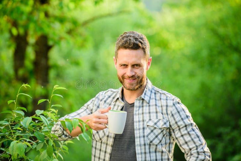 lycklig man med kopp te white f?r morgon f?r kappa f?r flicka f?r dressing f?r kaffekopp Sund livsstil Natur och h?lsa frukostupp royaltyfri fotografi
