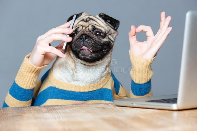 Lycklig man med mopshundhuvudet som talar på mobiltelefonen arkivbilder