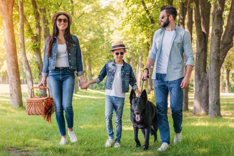 Lycklig mellan skilda raser familj med picknickkorgen som går med hunden i skog royaltyfri foto