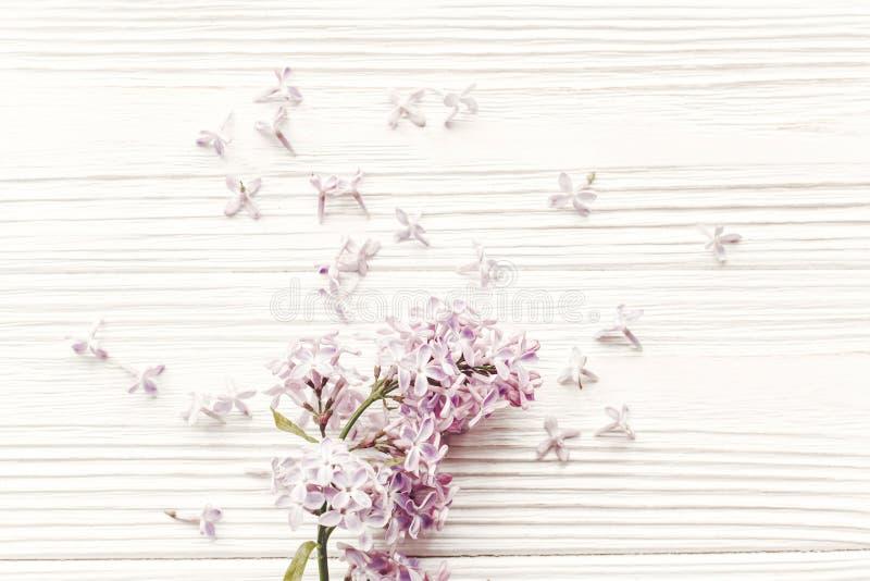 lycklig moder s för dag vårlägenheten lägger med lila blommor för tenderl I arkivfoto