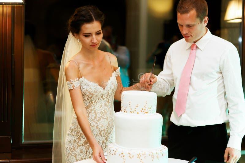 Lycklig parbrudgum och härlig brud som klipper läckert bröllop royaltyfri foto