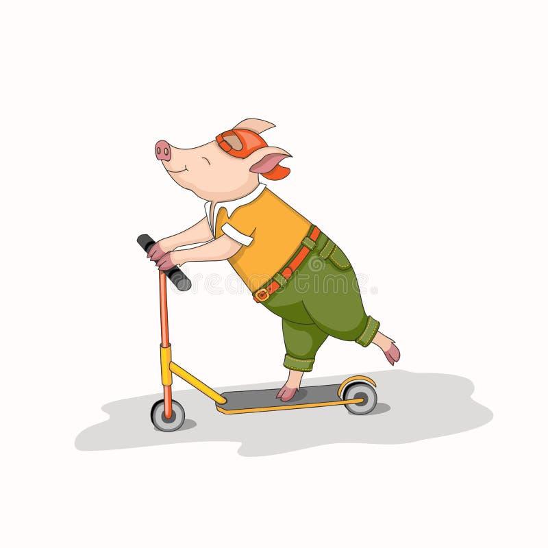 Lycklig piggy ridning en sparkcykel royaltyfri illustrationer